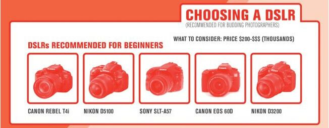 photography colleges online tipsographic