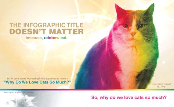 Thumbnail titled 'Why Do We Love Cats So Much?'