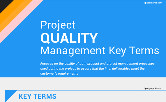 project and quality management term project What does quality mean in the context of my project and what is the project manager supposed to do about it.