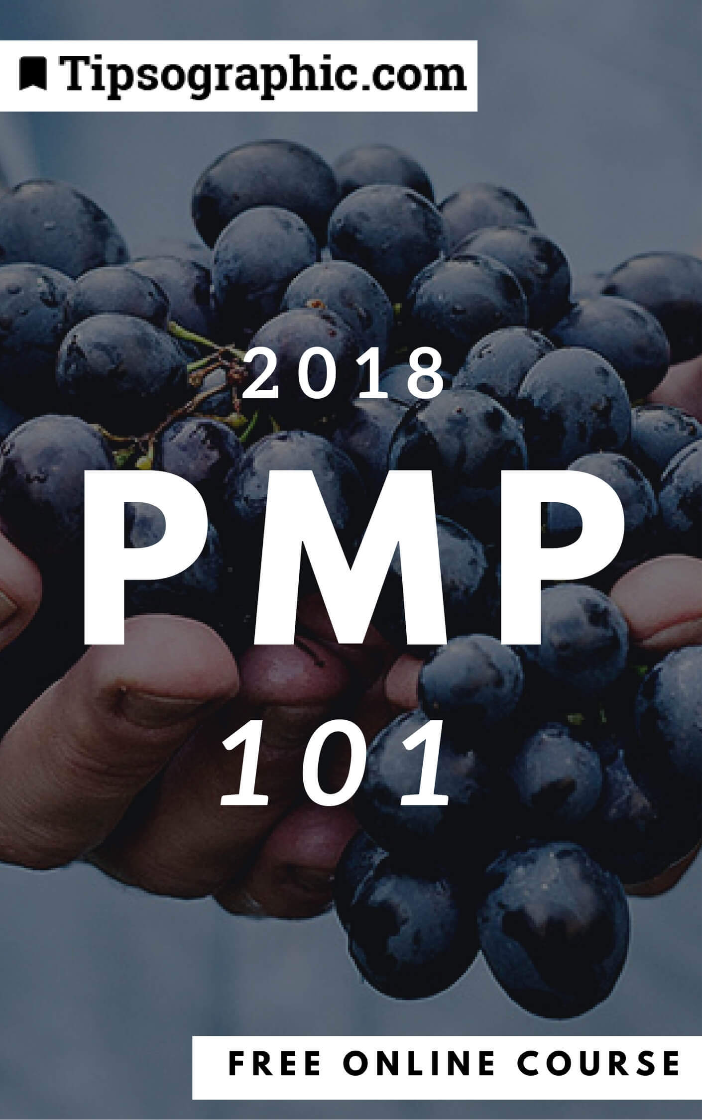 pmp 2018 101 free online course tipsographic (1)