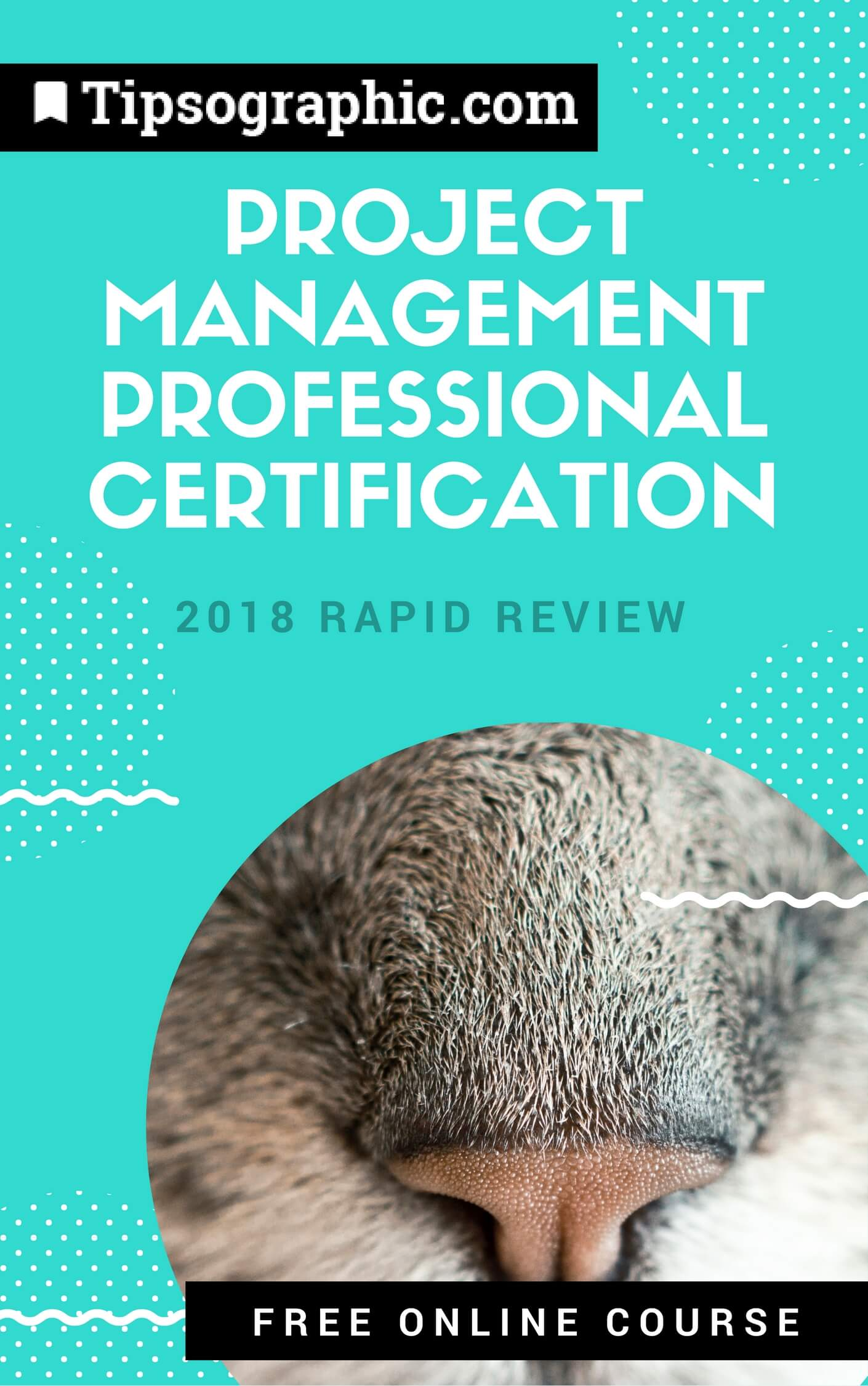 project management professional certification 2018 rapid review free online course tipsographic